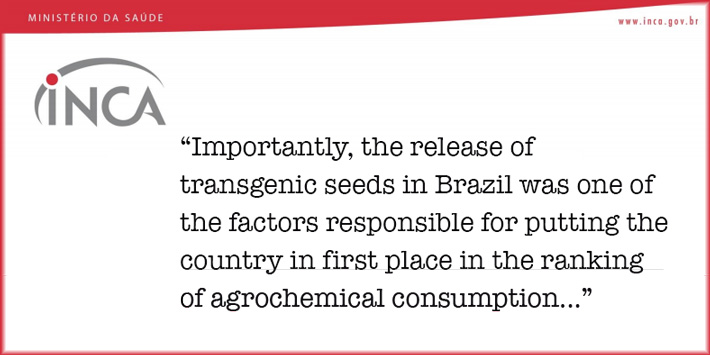 Brazils National Cancer Institute names GM crops