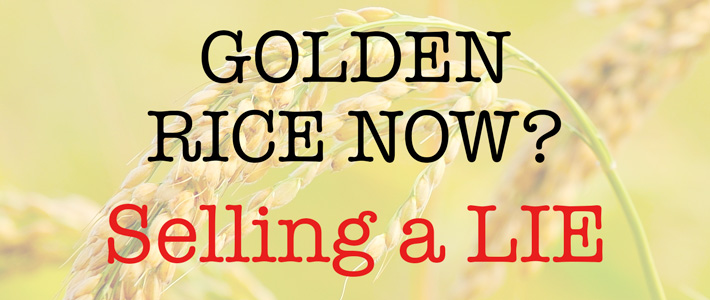 Golden rice now? - selling a lie!