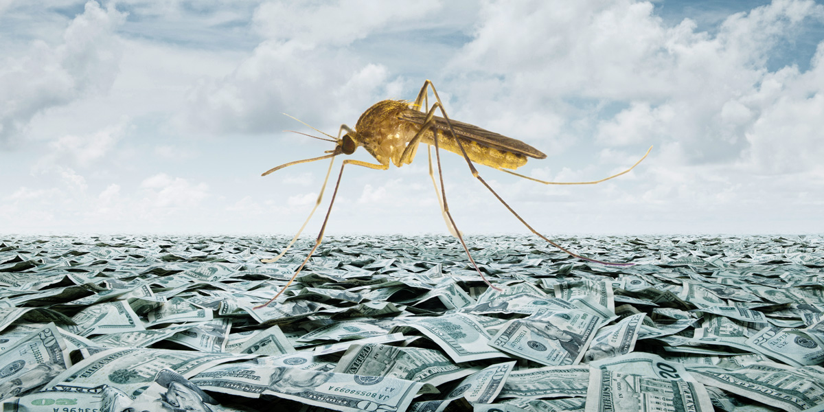 Mosquito on sea of cash