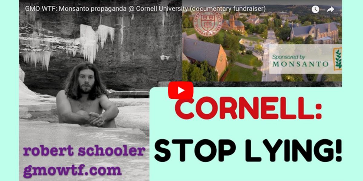 Robert Schooler Cornell Stop Lying