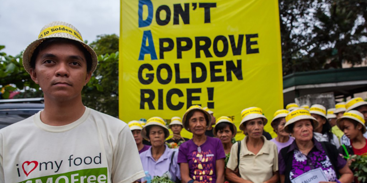 Greenpeace demo, do not approve golden rice