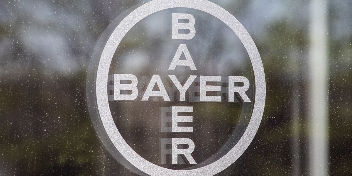 Bayer Window Logo