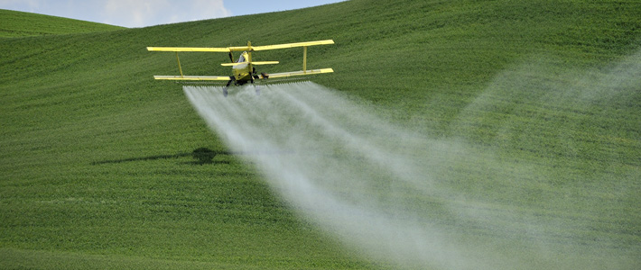 Crop Spraying Dow Chemical herbicide-resistant soybeans