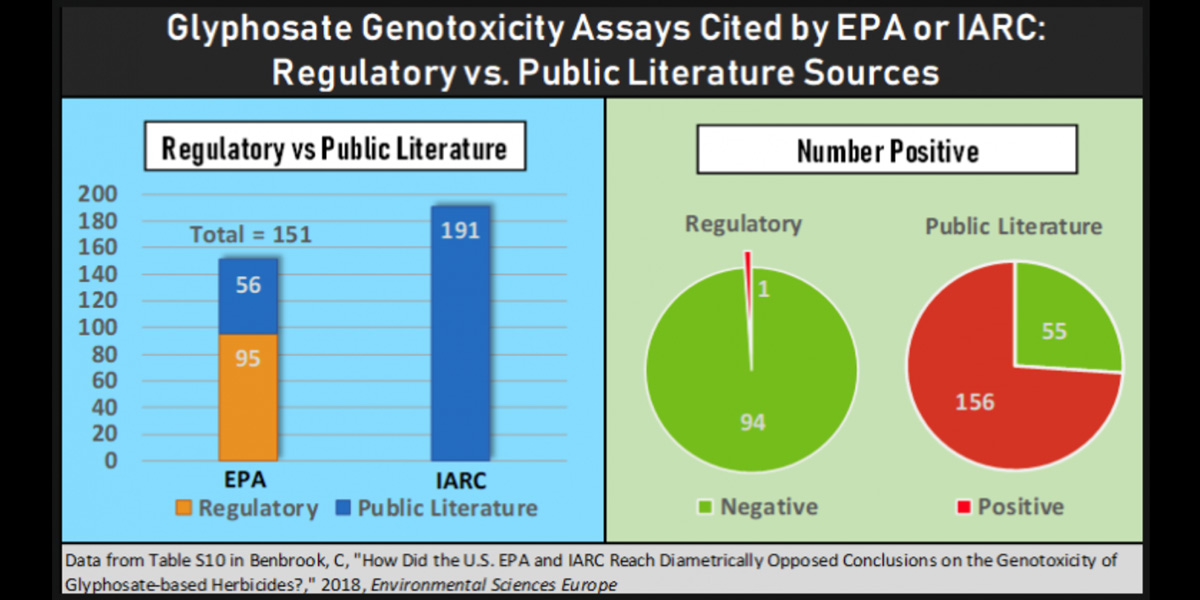 Glyphosate Genotoxicity Assay cited by EPA or IARC