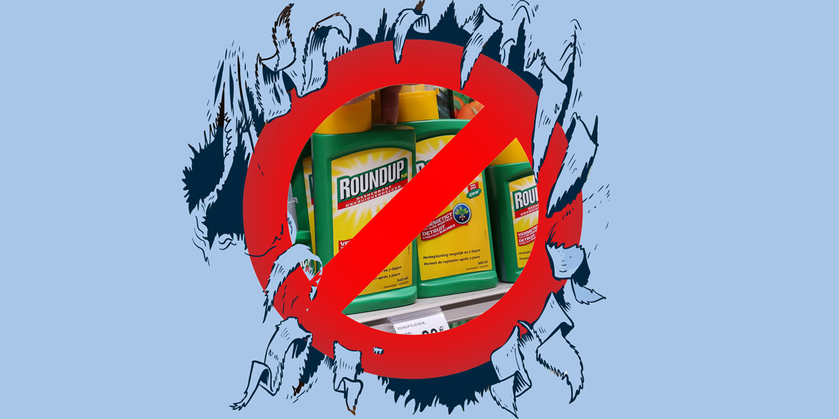 with glyphosate re approved is environmentalists strategy in tatters
