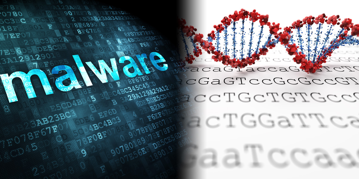 Maleware and DNA Sequence