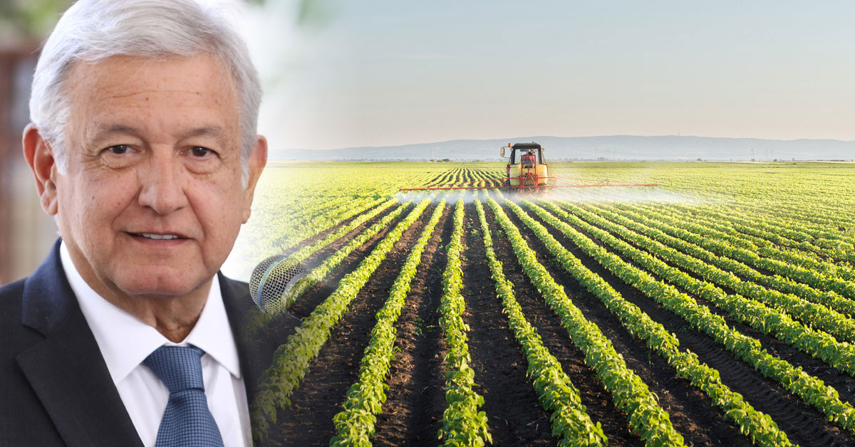Mexico's president and Tractor spraying soybean with pesticides