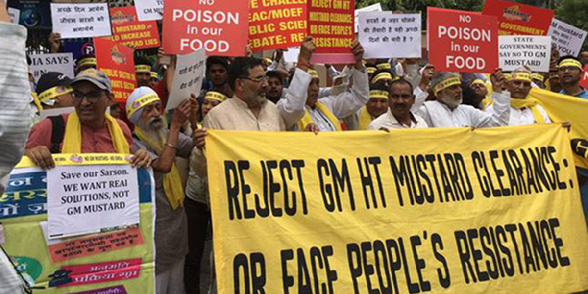 Reject GM mustard protest