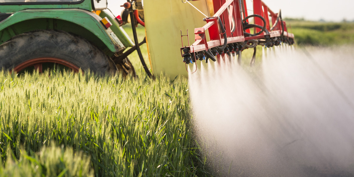 Tractor Pesticide spraying wheat field