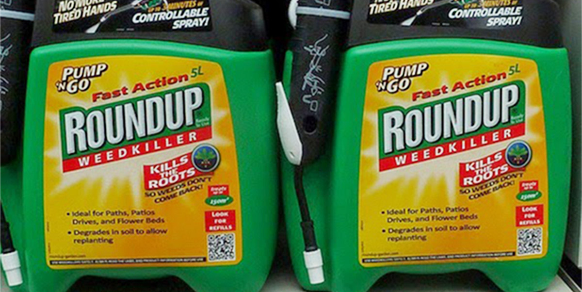 Two Roundup glyphosate weedkiller containers