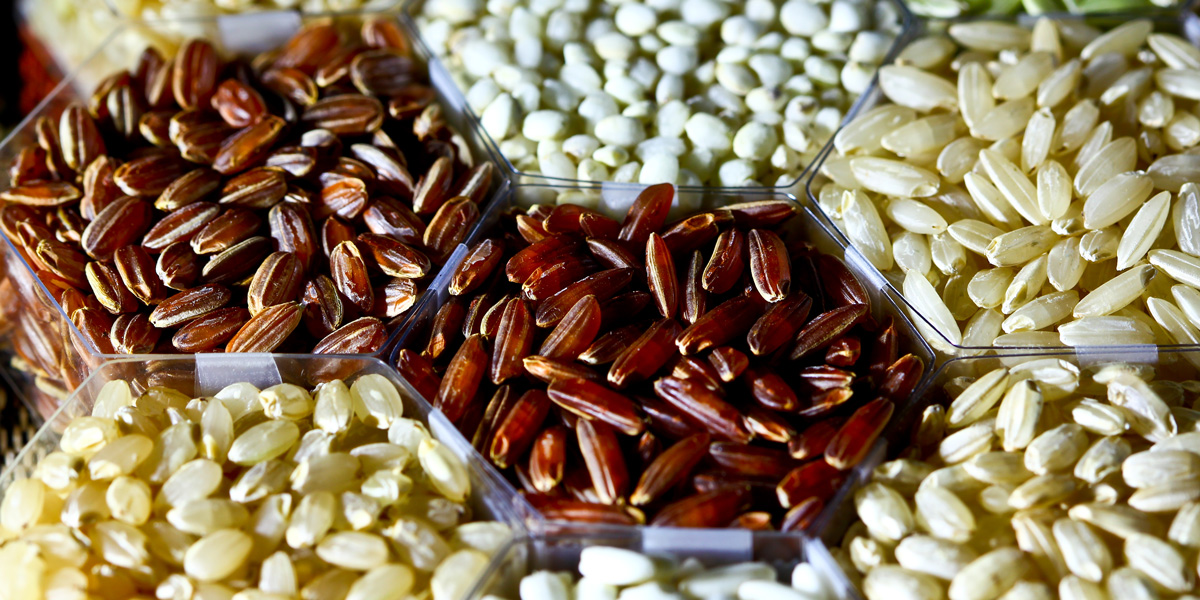 Varieties of rice grains