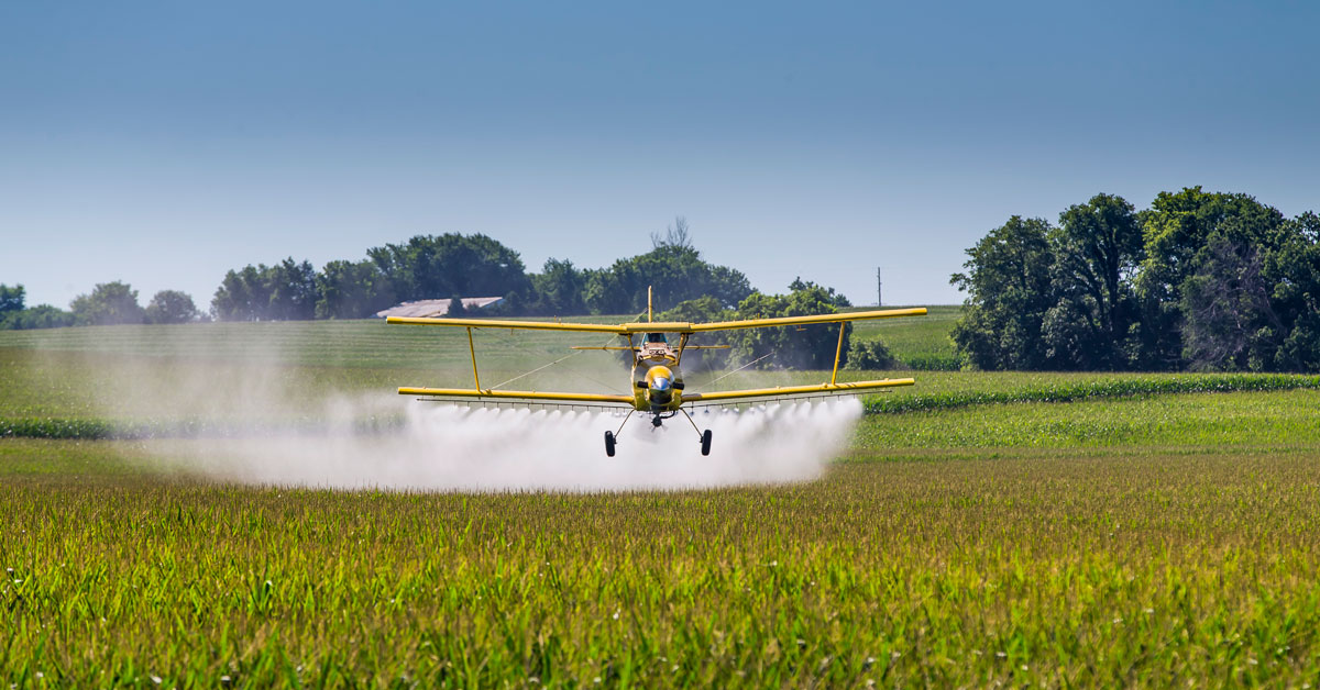 Yellow Crop Duster Plane