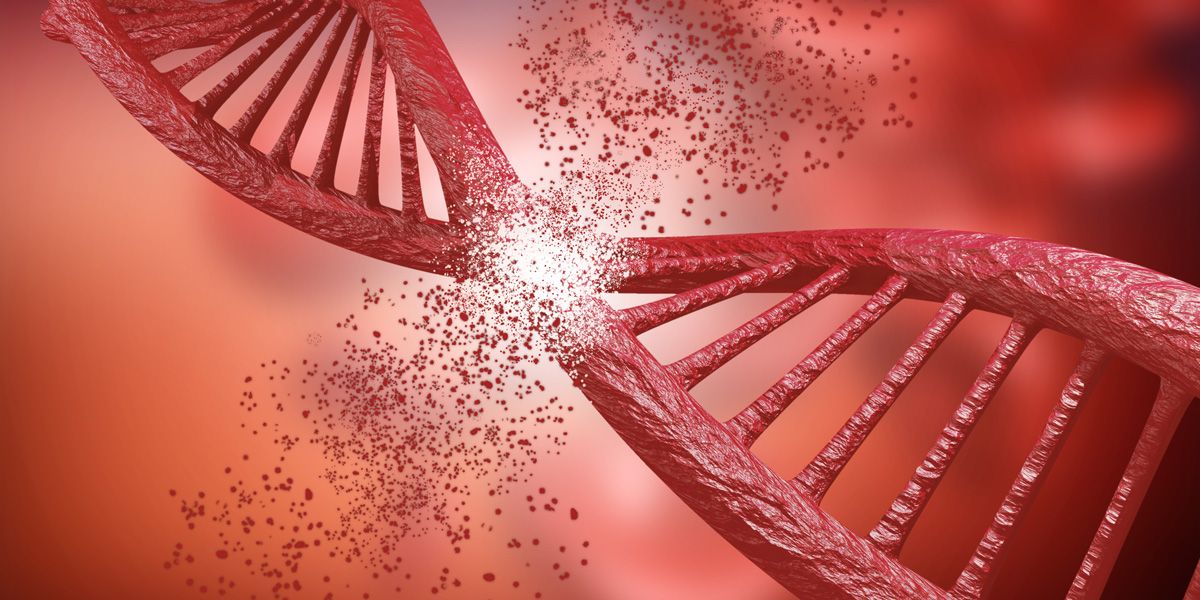 gene editing through Crispr
